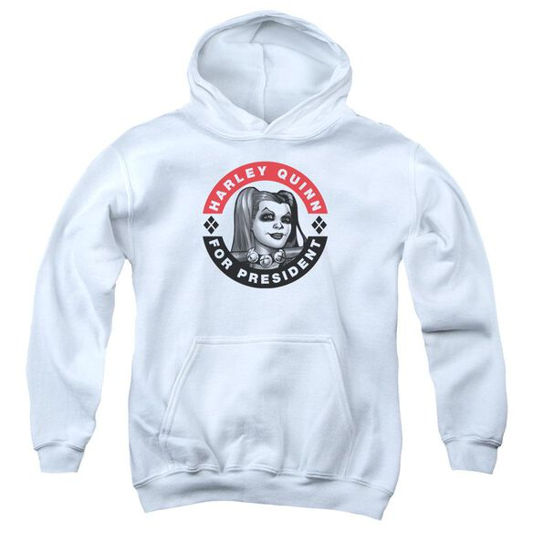 Batman Harley President Circle Youth Pull Over Hoodie