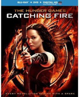 Various Artists - The Hunger Games: Catching Fire (Original Soundtrack)