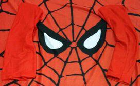 Spiderman Eyes Blanket