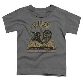 Sun Sun Rooster Short Sleeve Toddler Tee Charcoal Md T-Shirt