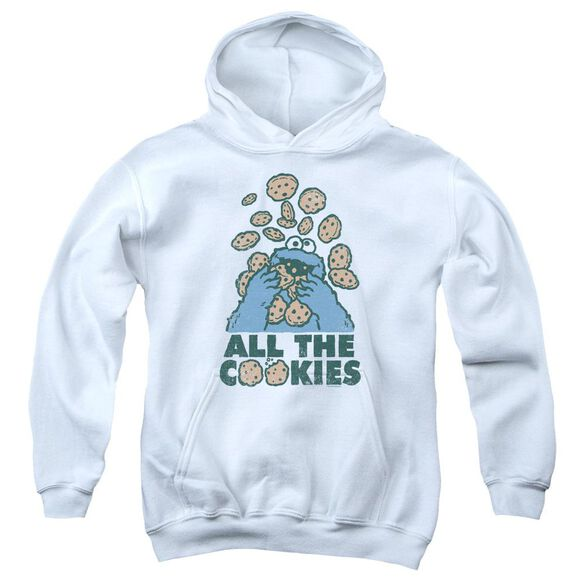 Sesame Street All The Cookies Youth Pull Over Hoodie