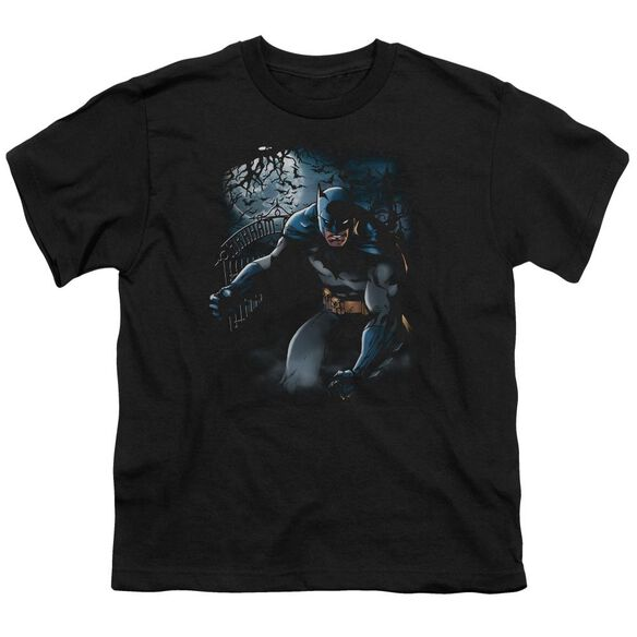Batman Light Of The Moon Short Sleeve Youth T-Shirt