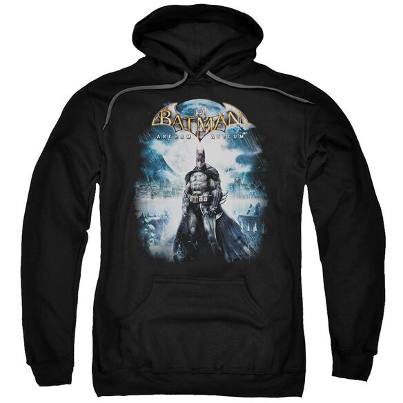 Batman Aa Game Cover Adult Pull Over Hoodie