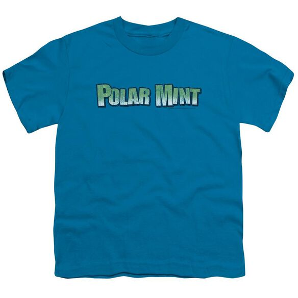 Dubble Bubble Polar Mint Short Sleeve Youth T-Shirt