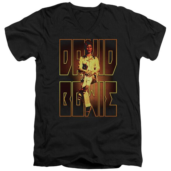 David Bowie Perched Short Sleeve Adult V Neck T-Shirt