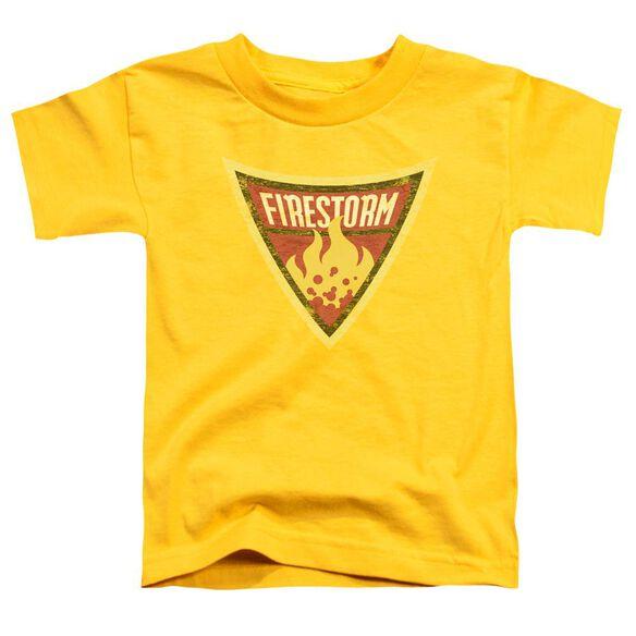 Batman Bb Firestorm Shield Short Sleeve Toddler Tee Yellow Md T-Shirt