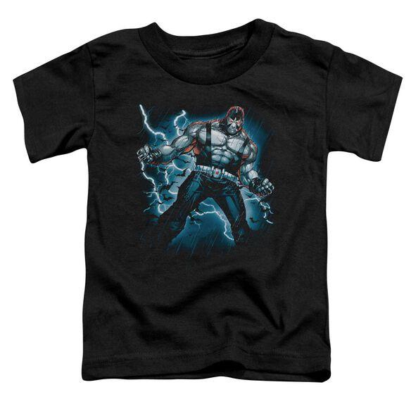 Batman Stormy Bane Short Sleeve Toddler Tee Black Sm T-Shirt