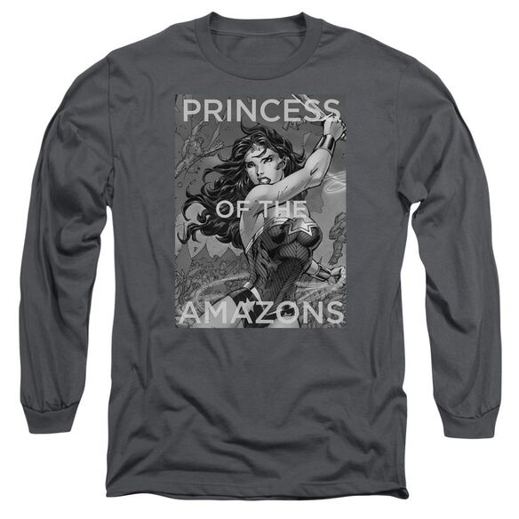 Jla Princess Of The Amazons Long Sleeve Adult T-Shirt