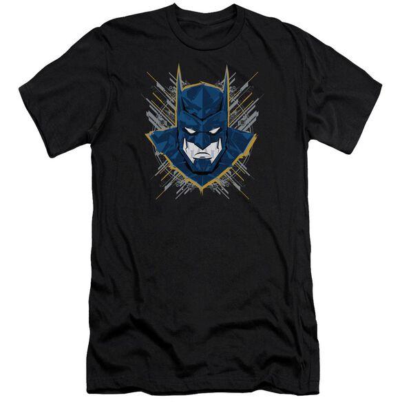 Batman Unlimited Bat Stare Short Sleeve Adult T-Shirt