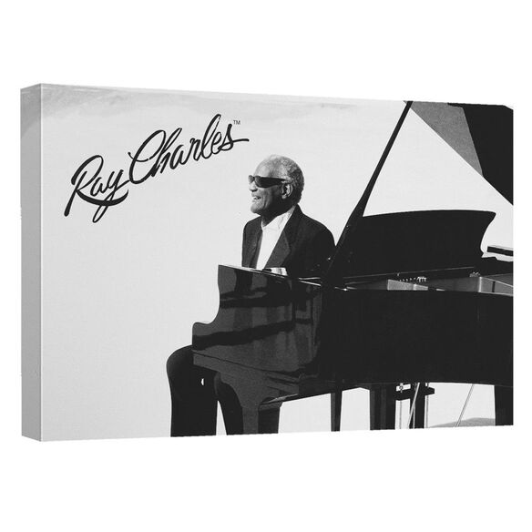 Ray Charles Sunny Ray Quickpro Artwrap Back Board