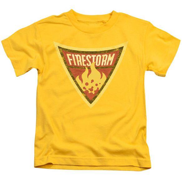Batman Bb Firestorm Shield Short Sleeve Juvenile Yellow Md T-Shirt