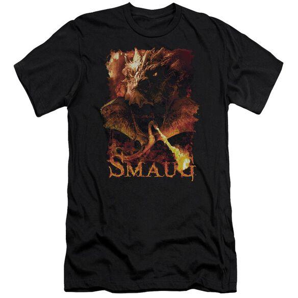 Hobbit Smolder Short Sleeve Adult T-Shirt