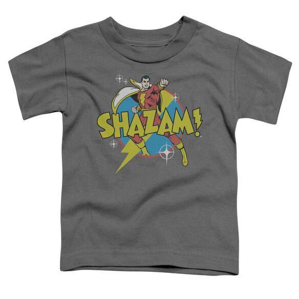 Dc Power Bolt Short Sleeve Toddler Tee Charcoal Md T-Shirt