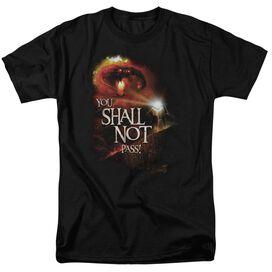 Lor You Shall Not Pass Short Sleeve Adult T-Shirt