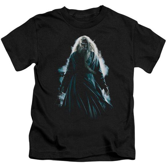 Harry Potter Dumbledore Burst Short Sleeve Juvenile T-Shirt