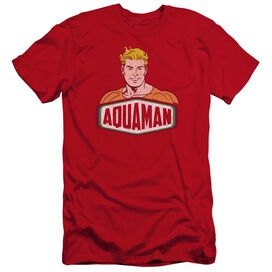 Dco Aquaman Sign Premuim Canvas Adult Slim Fit
