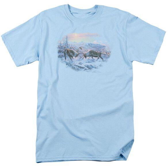 Wildlife Battling Bulls Short Sleeve Adult Light Blue T-Shirt