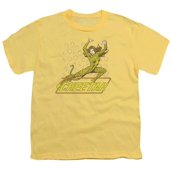 Dc The Cheetah Short Sleeve Youth T-Shirt