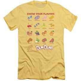 Dum Dums Flavors Short Sleeve Adult T-Shirt