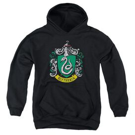 Harry Potter Slytherin Crest Youth Pull Over Hoodie