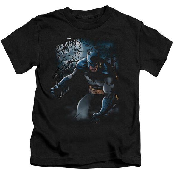 Batman Light Of The Moon Short Sleeve Juvenile Black T-Shirt