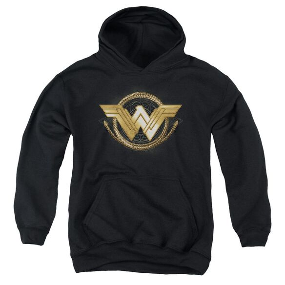 Wonder Woman Movie Lasso Logo Youth Pull Over Hoodie