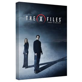 X Files Believe Canvas Wall Art With Back Board