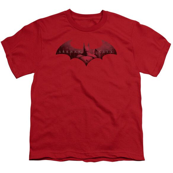 Arkham City In The City Short Sleeve Youth T-Shirt