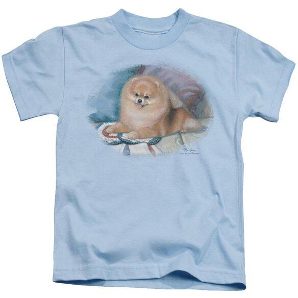 Wildlife Pomeranian Portrait Short Sleeve Juvenile Light T-Shirt