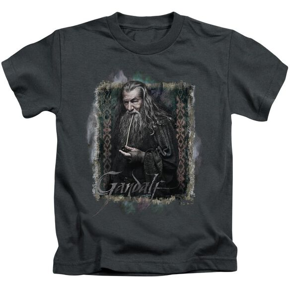 The Hobbit Gandalf Short Sleeve Juvenile Charcoal Md T-Shirt