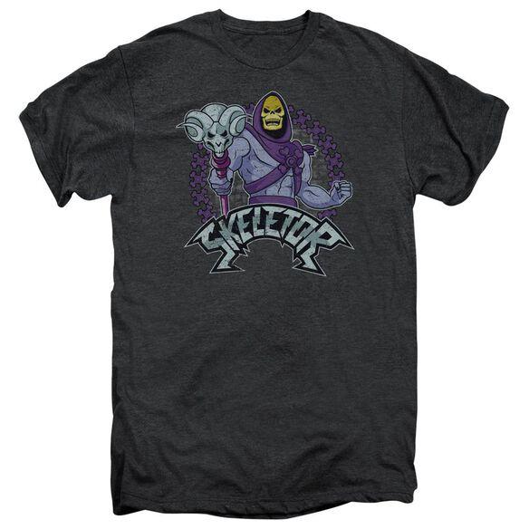 Masters Of The Universe Skeletor Short Sleeve Adult Premium Tee Smoke T-Shirt