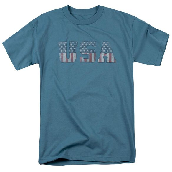 Worn Usa Short Sleeve Adult Slate T-Shirt