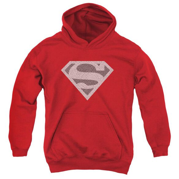 Superman Elephant Shield Youth Pull Over Hoodie