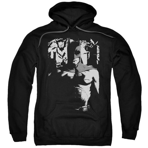 Batman Begins Birth Of Knight Adult Pull Over Hoodie