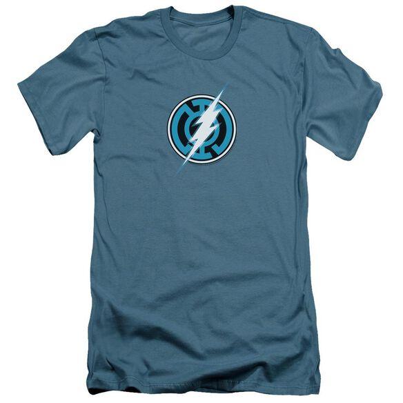 Green Lantern Blue Lantern Flash Short Sleeve Adult T-Shirt