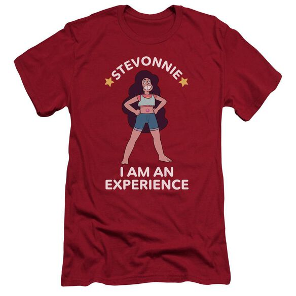 Steven Universe Stevonnie Hbo Short Sleeve Adult T-Shirt