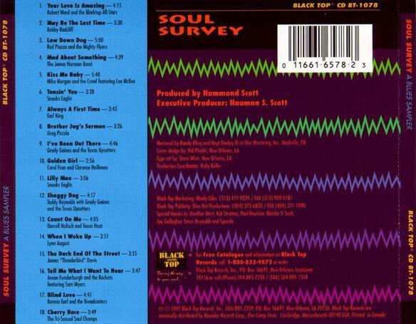Soul Survey 0700