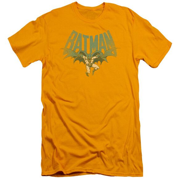 Dc Flying Bat Short Sleeve Adult T-Shirt