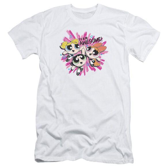 Powerpuff Girls Team Awesome Short Sleeve Adult T-Shirt