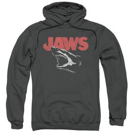 Jaws Cracked Jaw Adult Pull Over Hoodie