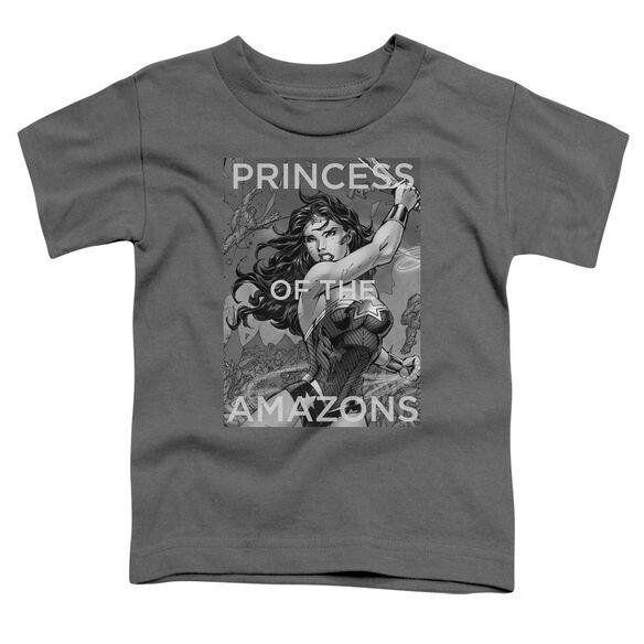 Jla Princess Of The Amazons Short Sleeve Toddler Tee Charcoal T-Shirt