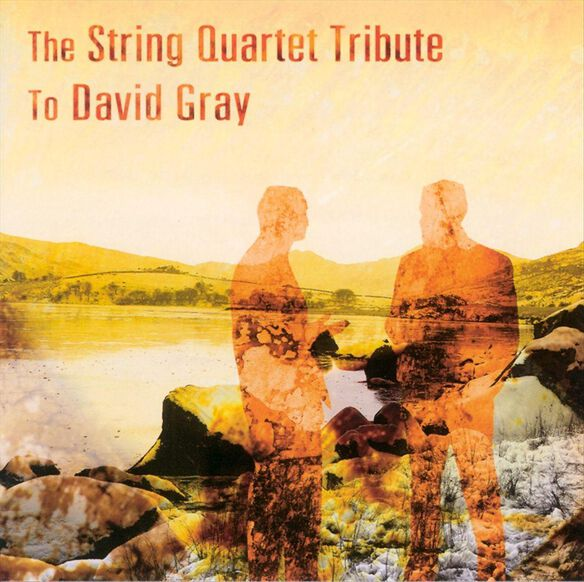 David Gray:String Quartet