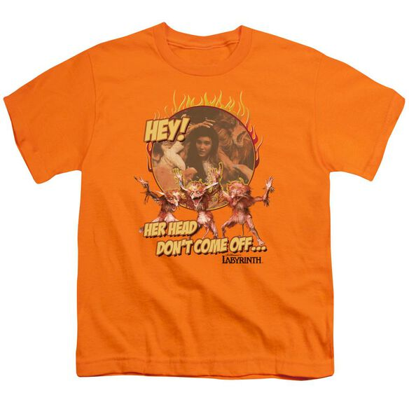 Labyrinth Head Don't Come Off Short Sleeve Youth T-Shirt