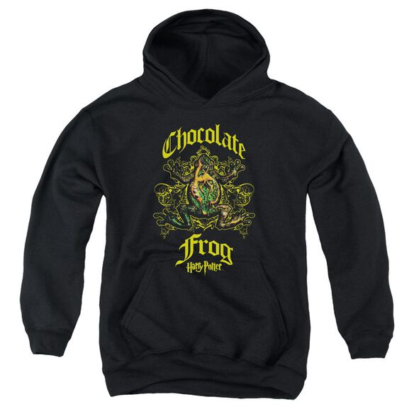 Harry Potter Chocolate Frog Youth Pull Over Hoodie