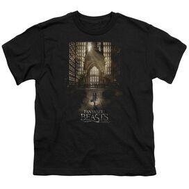 Fantastic Beasts Poster Short Sleeve Youth T-Shirt