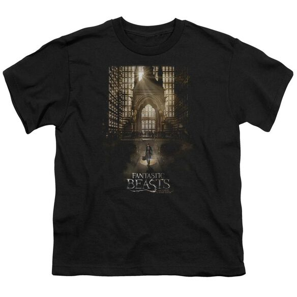 Fantastic Beasts Poster Short Sleeve Youth T-Shirt