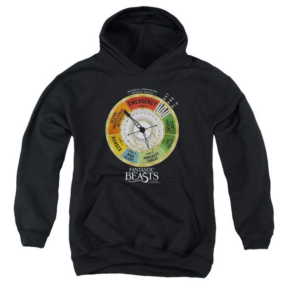 Fantastic Beasts Threat Gauge Youth Pull Over Hoodie