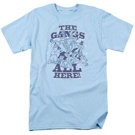 Looney Tunes Gang Short Sleeve Adult Light T-Shirt