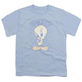 Looney Tunes Tweety Fade Short Sleeve Youth Light T-Shirt