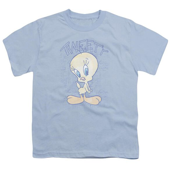 Looney Tunes Tweety Fade Short Sleeve Youth Light T-Shirt